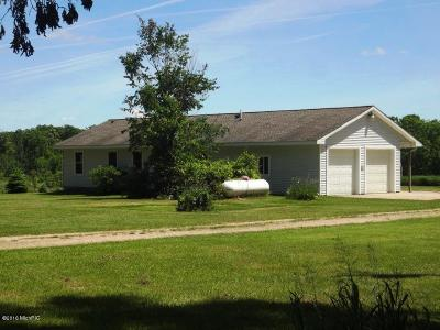Newaygo County Single Family Home For Sale: 6056 E 20th St