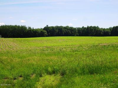Newaygo County Residential Lots & Land For Sale: 6056 E 20th Parcel C