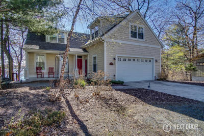 Pentwater Single Family Home For Sale: 6818 Orange Street