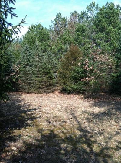 Residential Lots & Land For Sale: 2691 Rogue River Road