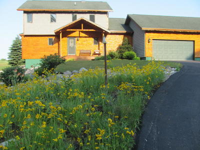 Manistee County Single Family Home For Sale: 6704 Farr Road