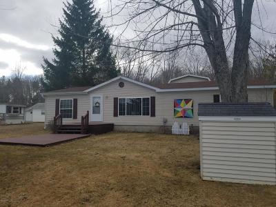 Chippewa Lake, Evart Single Family Home For Sale: 19986 Terrill Avenue