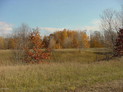 Shelby MI Residential Lots & Land For Sale: $23,900