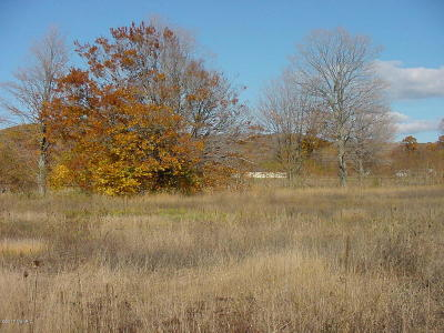 Residential Lots & Land For Sale: W Buchanan Road