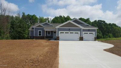 Belding Single Family Home For Sale: 12393 Plantation Court