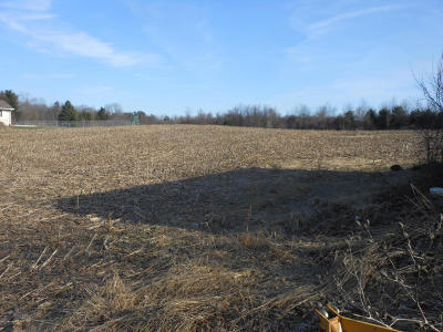 Berrien Springs Residential Lots & Land For Sale: 6206 Long Lake