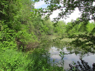 Branch County Residential Lots & Land For Sale: Holiday Dr