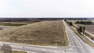 Clinton County, Gratiot County, Isabella County, Kent County, Mecosta County, Montcalm County, Muskegon County, Newaygo County, Oceana County, Ottawa County, Ionia County, Ingham County, Eaton County, Barry County, Allegan County Residential Lots & Land For Sale: Lake Michigan Drive