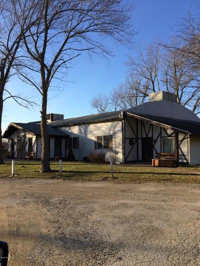 Bridgman Commercial For Sale: 9973 Church Street