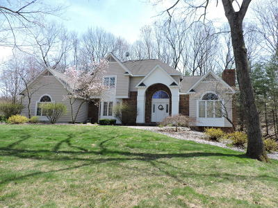 Big Rapids Single Family Home For Sale: 15191 Oakwood Drive