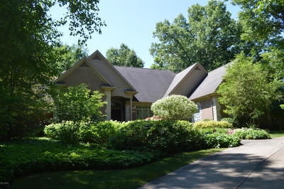 Niles Single Family Home For Sale: 32841 Cayuga Heights Ln