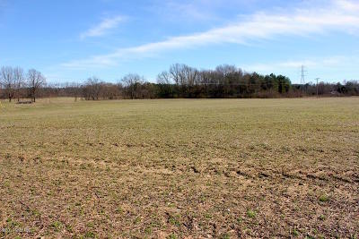 Niles Residential Lots & Land For Sale: 3002 M-60