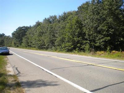 Mason County Residential Lots & Land For Sale: Us 31 #10 Acres