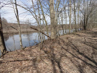 Holland, West Olive Residential Lots & Land For Sale: 6380 B N Lakeshore