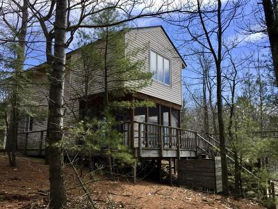 Pentwater Single Family Home For Sale: 9001 Timber Shores