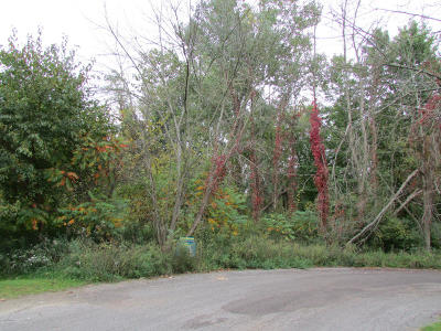 Paw Paw Residential Lots & Land For Sale: 48681 Valley Court