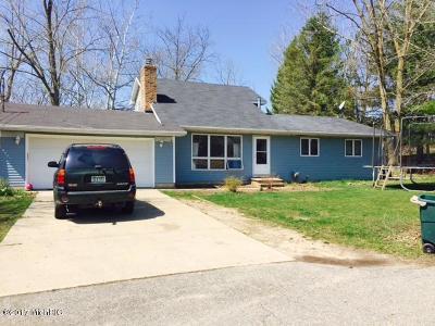 Lake Odessa MI Single Family Home For Sale: $165,000