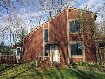 Isabella County, Mecosta County, Montcalm County, Newaygo County, Osceola County Single Family Home For Sale: 9096 Miramichi Drive