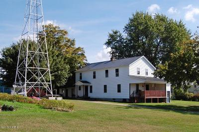 Mecosta County Single Family Home For Sale: 7984 2 Mile Road