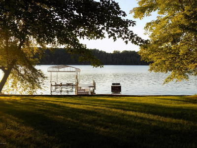 Newaygo Single Family Home For Sale: 5563 S River Drive