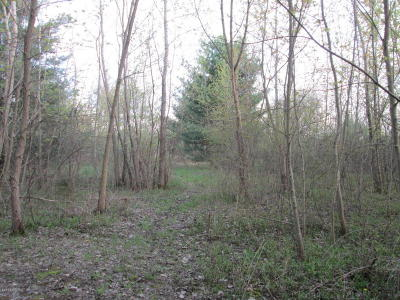 Sawyer MI Residential Lots & Land For Sale: $39,900