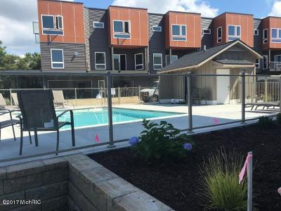 Holland, West Olive Condo/Townhouse For Sale: 381 Macatawa Park Park #22