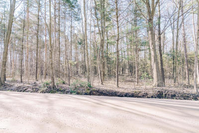 Holland, West Olive Residential Lots & Land For Sale: Pierce Street