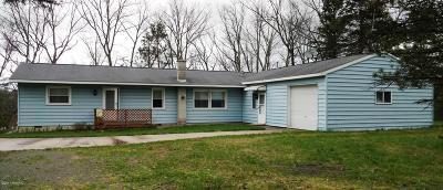 Baldwin Single Family Home For Sale: 5181 S Chief Okemoes Trail