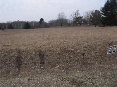 Evart Residential Lots & Land For Sale: Lot 899 Pontiac Trail