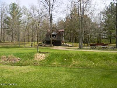 Mecosta County Single Family Home For Sale: 518 20 Mile Road