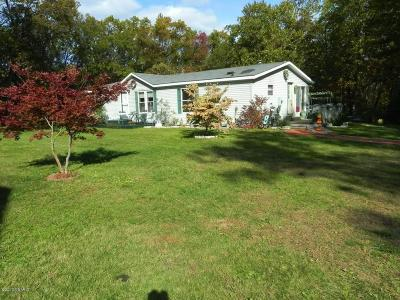 Newaygo Single Family Home For Sale: 9393 S Clay