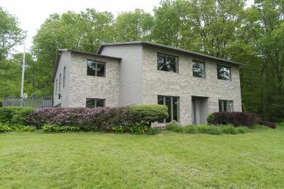 Belding Single Family Home For Sale: 11951 Jenks Street NE