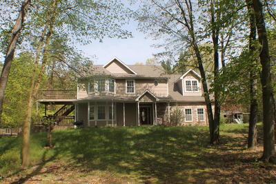 Cass County Single Family Home For Sale: 24550 Davis Lake Street