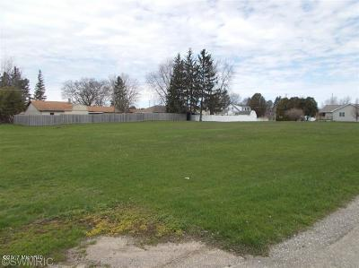 Scottville Residential Lots & Land For Sale: Lot B, C, D Gay St.