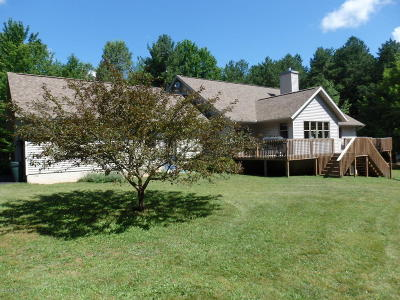 Manistee County Single Family Home For Sale: 13791 Big Four Road