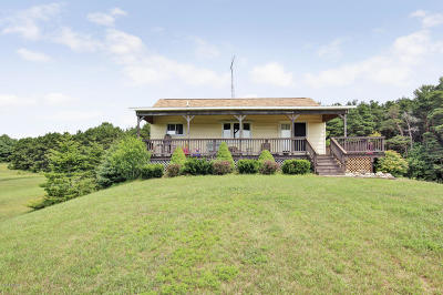 Mears Single Family Home For Sale: 2174 N Wilson Road
