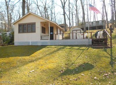 Belding Single Family Home For Sale: 13719 Lower Bayside