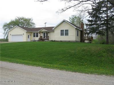 Lake Odessa MI Single Family Home For Sale: $236,000