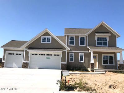 Zeeland Single Family Home For Sale: 1345 Shenandoah Drive #90