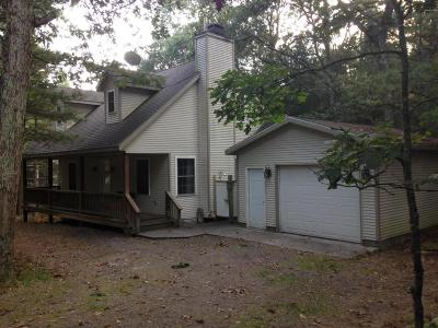 Pentwater Single Family Home For Sale: 9167 N Helena Avenue