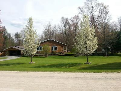 Scottville Single Family Home For Sale: 1419 W Dewey