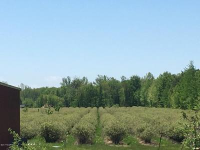 Holland, West Olive Residential Lots & Land For Sale: 5857 140th Avenue