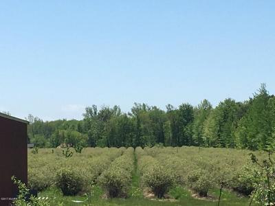 Holland, West Olive Residential Lots & Land For Sale: 5857 142nd Avenue