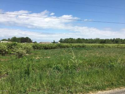 Holland, West Olive Residential Lots & Land For Sale: 52nd Avenue