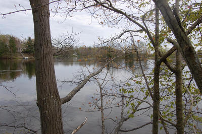 Gladwin County Residential Lots & Land For Sale: Deer Run