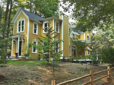 Saugatuck, Douglas Single Family Home For Sale: 390 Union Street