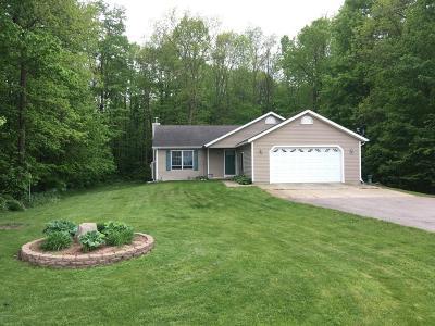 Middleville Single Family Home For Sale: 12775 Finkbeiner Rd.