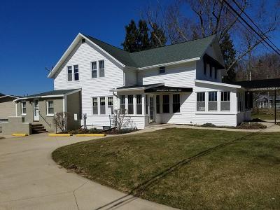 Saugatuck, Douglas Single Family Home For Sale: 787 Lake Street #11