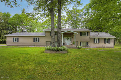 Newaygo Single Family Home For Sale: 4525 S Croton Hardy Drive