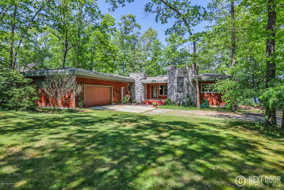 Allegan Single Family Home For Sale: 3855 Forest Trail